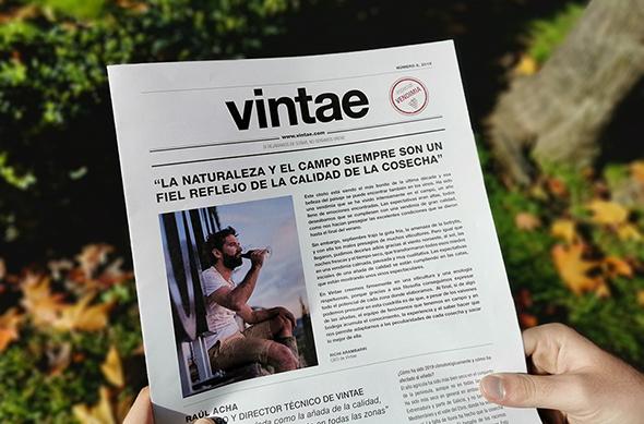Vintae News Especial Vendimia 2019