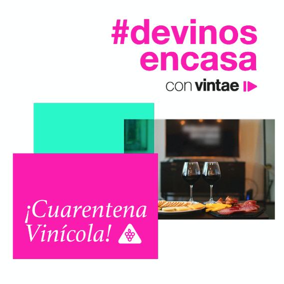 De vinos con Vintae